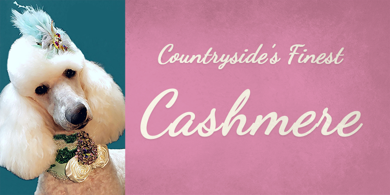 Countryside's Finest Cashmere titlecard