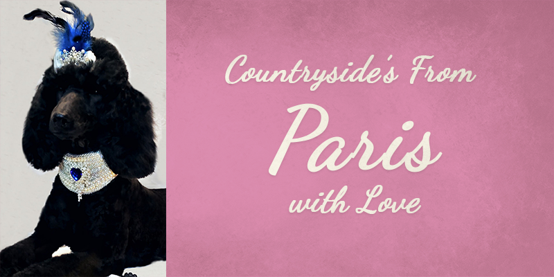 Countryside From Paris with Love's Titlecard