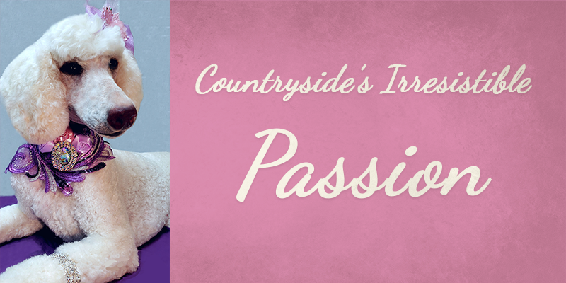 Countryside's Irresistible Passion's Titlecard